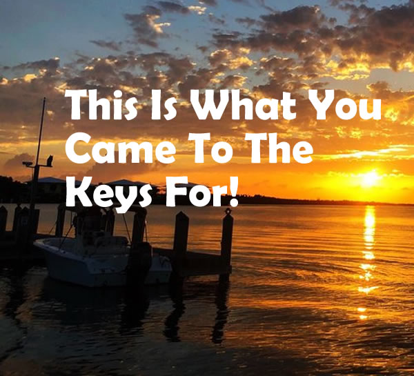 This Is What You Came To The Keys For!